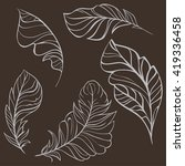 set of hand drawn feathers. ... | Shutterstock .eps vector #419336458