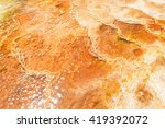 yellowstone national park  ...   Shutterstock . vector #419392072