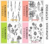 vector vintage template label... | Shutterstock .eps vector #419393062