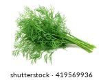 Bunch Fresh  Green Dill On A...