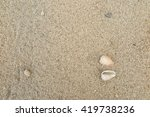 fossil shell on the sand beach | Shutterstock . vector #419738236