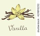 vanilla beautiful flowers and... | Shutterstock .eps vector #419893252