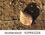Single Fall Leaf On Gravel Pat...