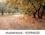hiking trail through woods in... | Shutterstock . vector #41996620