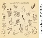 hand drawn set of culinary... | Shutterstock .eps vector #419983855