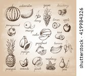 set of fruits. hand drawn... | Shutterstock .eps vector #419984326