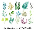 hand drawn watercolor botanical ... | Shutterstock . vector #420476698