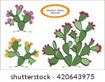 prickly pear vector. prickly... | Shutterstock .eps vector #420643975
