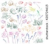 elements of nature kit vector... | Shutterstock .eps vector #420724615