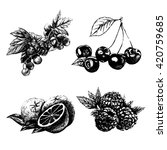 hand drawn vector vintage set... | Shutterstock .eps vector #420759685