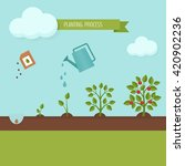 planting process infographic.... | Shutterstock .eps vector #420902236