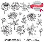 vector collection of hand drawn ... | Shutterstock .eps vector #420933262