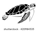 Stock vector graphic sea turtle vector 420984535