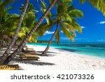 Tropical Beach In Caribbean Se...