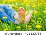 Relaxing Lying In A Meadow In...