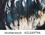 background of chicken feathers | Shutterstock . vector #421269796