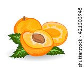 apricot. vector painting on... | Shutterstock .eps vector #421303945
