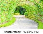 tunnel vegetable | Shutterstock . vector #421347442
