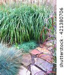 Decorative Grass And Stone Pat...