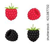 berries of raspberry and... | Shutterstock .eps vector #421387732