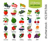 nice set of different berries | Shutterstock .eps vector #421391566