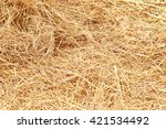 Dry Yellow Hay  Grass Background