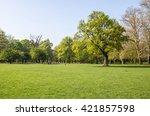 green tidy park grass lawn... | Shutterstock . vector #421857598