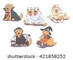 set of golden retrievers in... | Shutterstock .eps vector #421858252