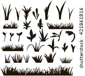 vector   isolated grass... | Shutterstock .eps vector #421861816