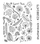tropical plants  sketch for... | Shutterstock .eps vector #421881475