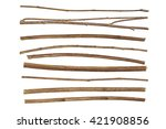 twigs  set macro dry branches... | Shutterstock . vector #421908856