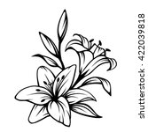 vector black contour of lily... | Shutterstock .eps vector #422039818