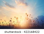 blur of  meadow with beautiful... | Shutterstock . vector #422168422
