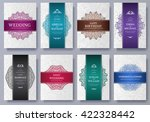 set of luxury colors artistic... | Shutterstock .eps vector #422328442