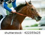 Stock photo racing horse portrait in action 422355625