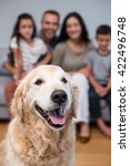 pet in living room and family... | Shutterstock . vector #422496748