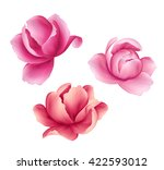 digital illustration  pink... | Shutterstock . vector #422593012
