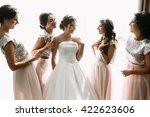 positive moment of the bride...   Shutterstock . vector #422623606