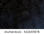 spider web in the dark | Shutterstock . vector #422645878