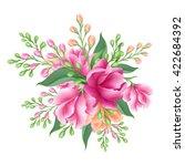 digital illustration  fresh... | Shutterstock . vector #422684392