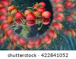 Abstract Background  Fruits An...