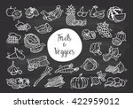 fruit and vegetables doodle | Shutterstock .eps vector #422959012