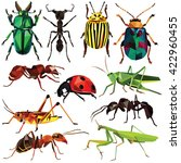 insect set colorful low poly... | Shutterstock .eps vector #422960455