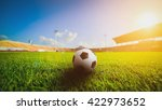 soccer ball on grass in soccer... | Shutterstock . vector #422973652