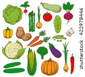 cabbages broccoli  pea and... | Shutterstock .eps vector #422978446