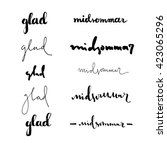 set of hand drawn lettered... | Shutterstock .eps vector #423065296
