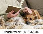 old man sitting on the sofa... | Shutterstock . vector #423239686
