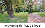 park alley in the botanical... | Shutterstock . vector #423315916