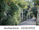 park alley in the botanical... | Shutterstock . vector #423315922