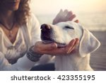 owner caressing gently her dog | Shutterstock . vector #423355195